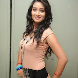 Bhanu Sri Hot Photos at Veedi Pourusham Movie Press Meet 47