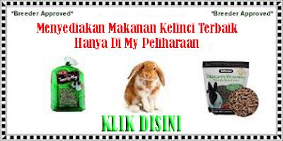 http://mypeliharaan.blogspot.com/p/jual-makanan-kelinci-berkualitas.html