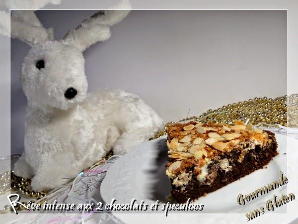 Gâteau sans gluten au chocolat et fécule