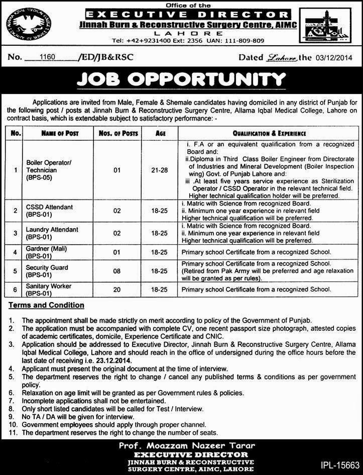 Job in Jinnah Burn & Reconstructive Surgery Center 2014 15
