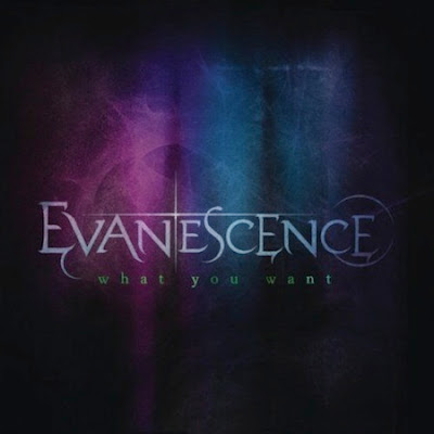 Evanescence - What You Want Lyrics