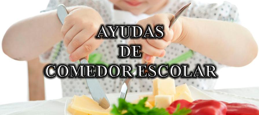Meseta Al D A Ayudas De Comedor Escolar Curso 2015 16