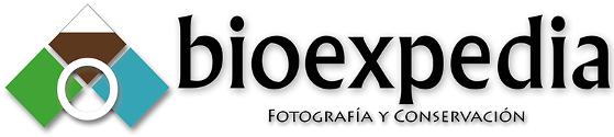 bioexpedia