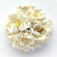 http://scrapandcraft.co.uk/home/322-mulberry-paper-magnolia-flowers-x10-white.html