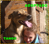 TANGO ADOPTADO!!!!