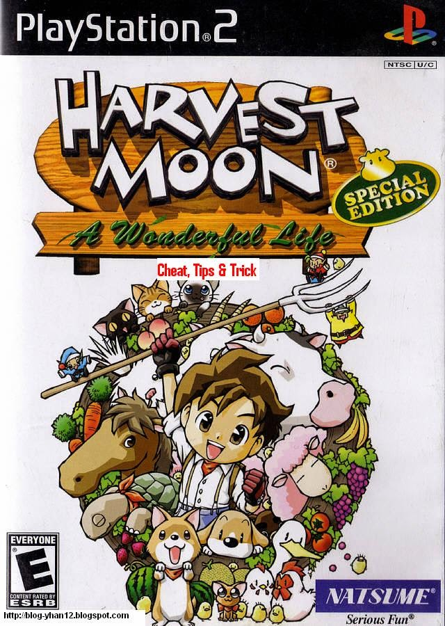 harvest moon save the homeland walkthrough bahasa indonesia pdf