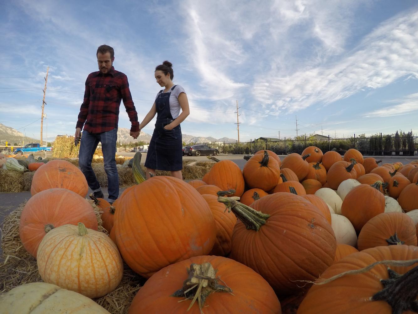 Fall Date Night Idea: Pumpkin Picking