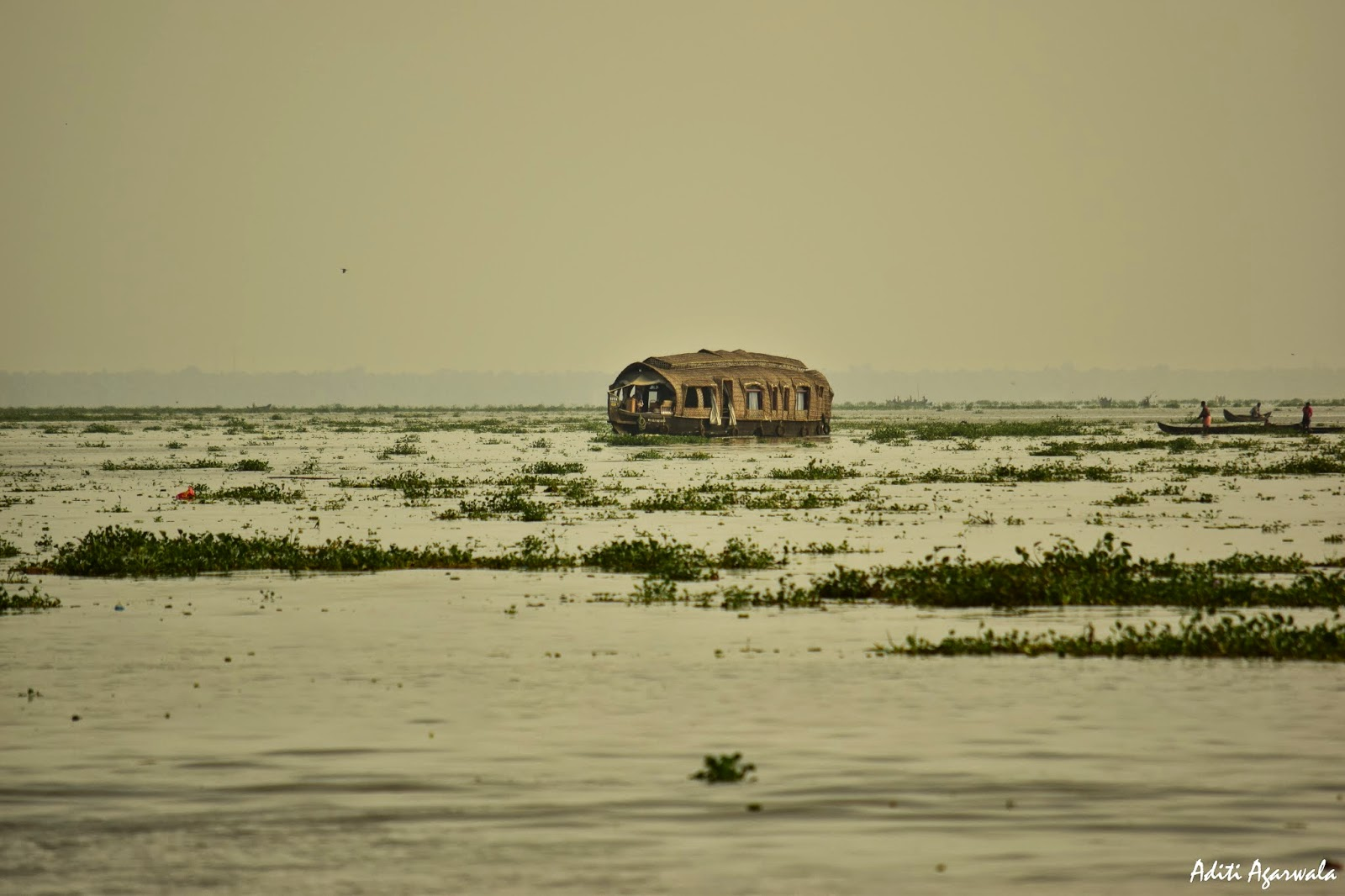 A single houseboat on the backwaters of Allepey, Kerala