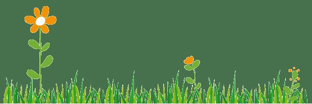 Frise illustration herbe et fleurs vectoriel