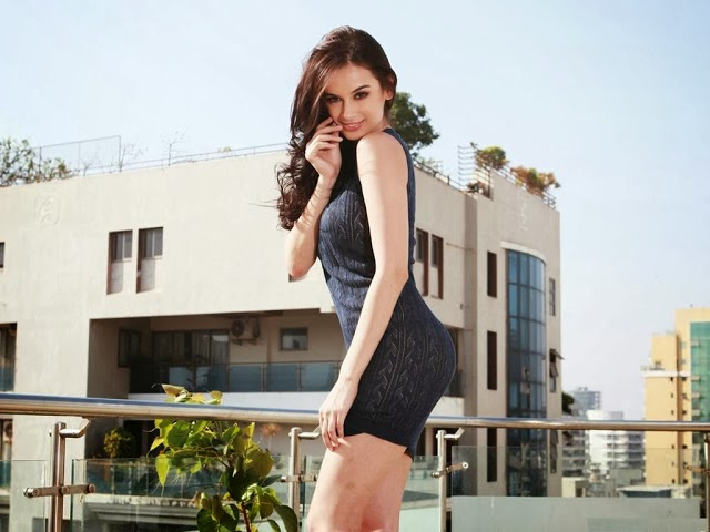Evelyn+Sharma+Hd+Wallpapers+Free+Download026