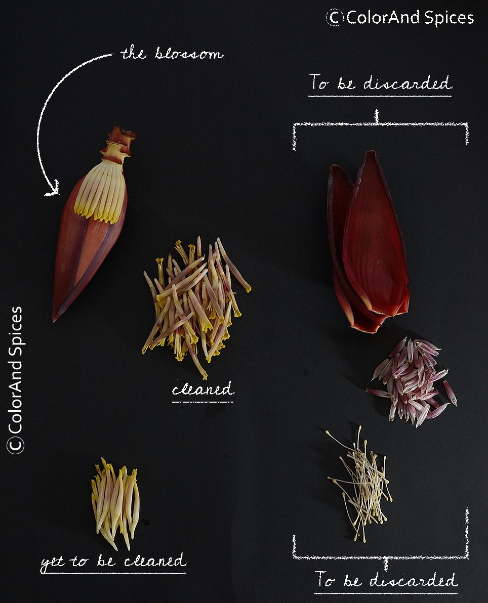 Color And Spices Mocha Chingri Banana Blossom N Shrimp