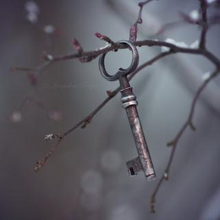 key_to_my_soul_by_petaldreams-d4oyb4d.jpg