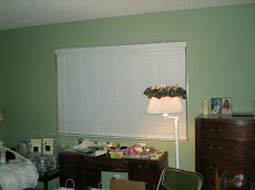 Blinds Install 2
