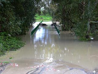 El viejo puente cubierto por las aguas del Guadalete (diciembre 2003)