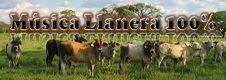Música Llanera 100%