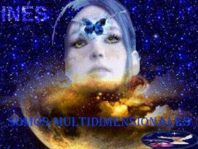 SOMOS MULTIDIMENSIONALES