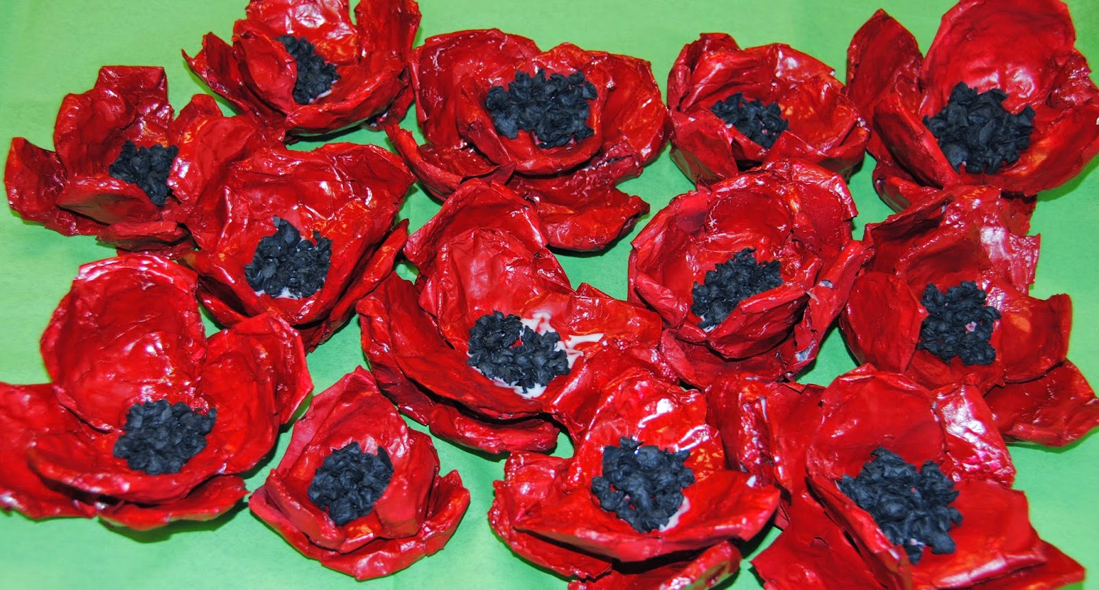 poppies an art project for remembrance day ruth daly author