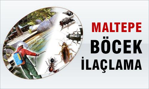 Maltepe Böcek İlaçlama