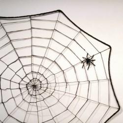 toile d'araignée avec une araignée
