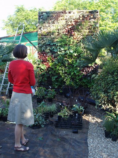 Uprooted Gardener How To Build Your Own Living Wall Or Vertical Garden