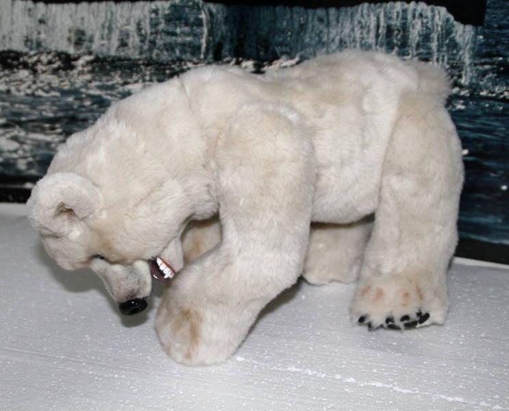 Knut ilM