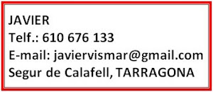 Contactar