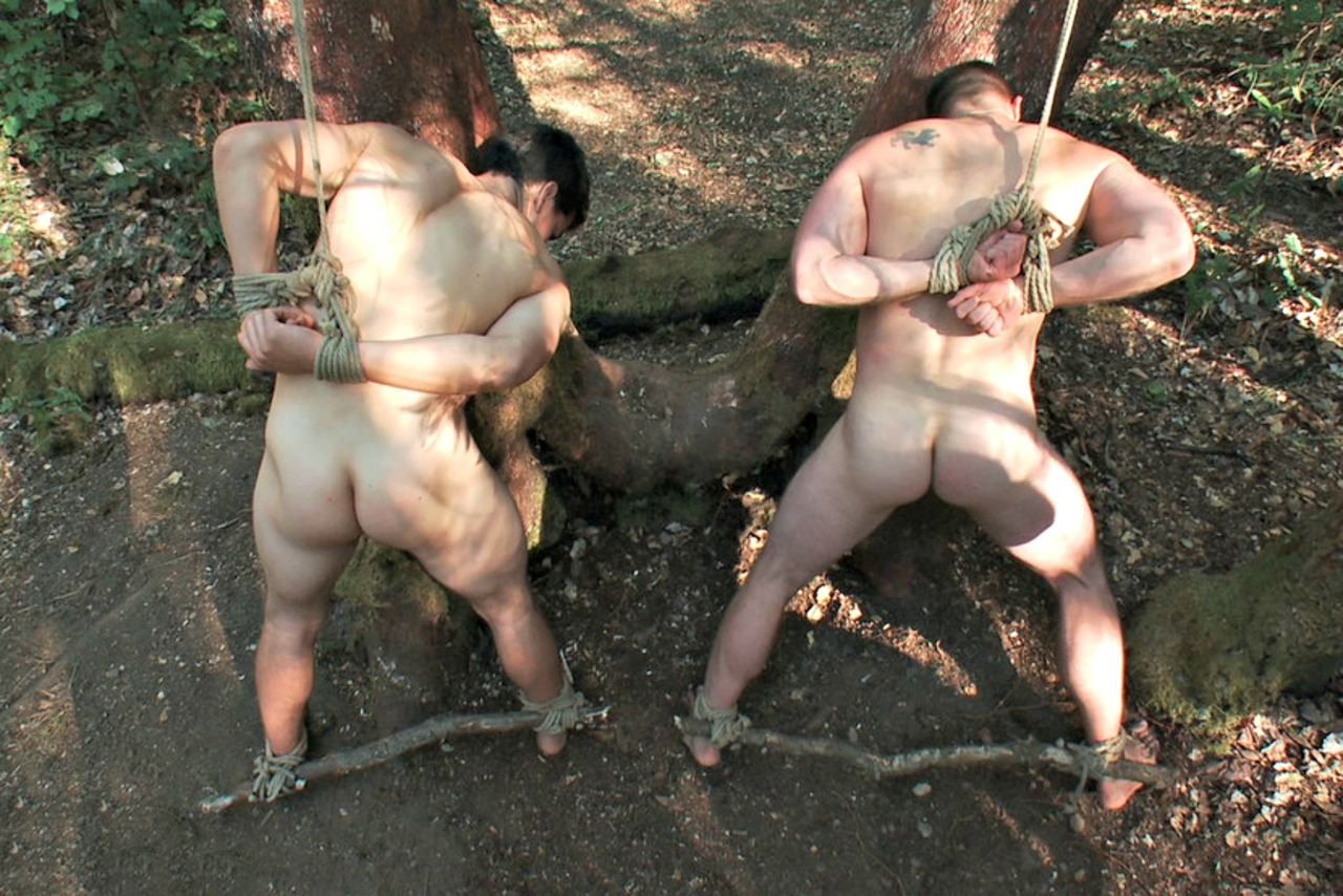 Связанные порно в лесу 1 фотография