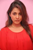 Madhu shalini latest glam pics-thumbnail-15