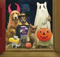 ¡Feliz Halloween 2013!