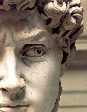 Ojo y rostro del David de Miguel Angel. Las mejores esculturas del renacimiento.