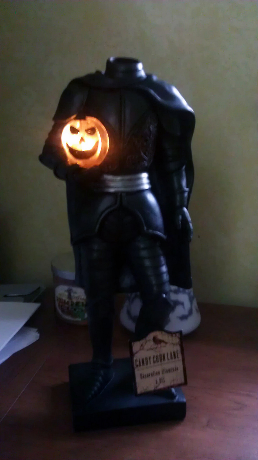 http://www.halloweenforum.com/general-halloween/136251-home-goods-2014-a-29.html