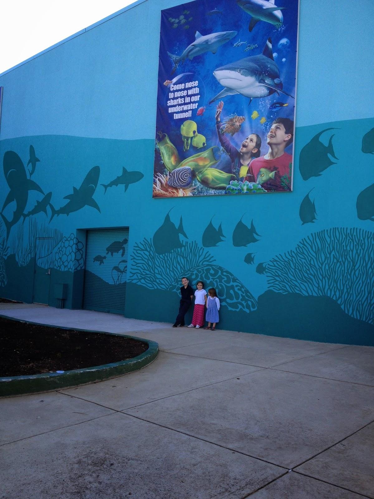 Gloria in excelsis deo sea life aquarium Concord mills mall aquarium