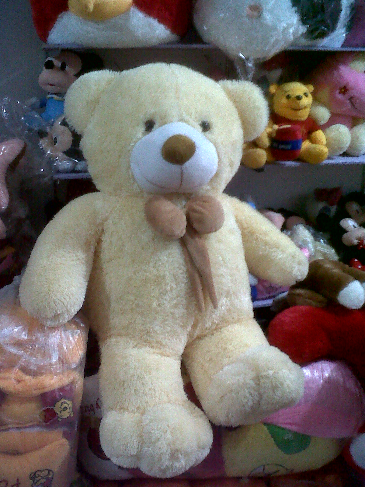 gambar beruang - gambar beruang