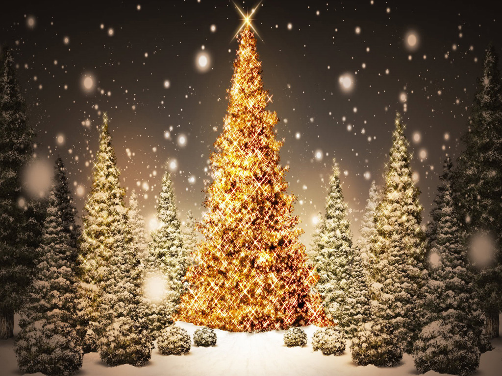 free download christmas tree hd wallpapers for ipad