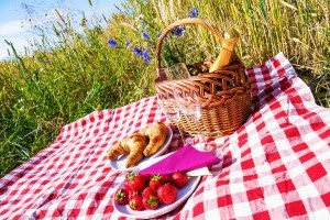 http://www.firstchoicepower.com/blog/national-picnic-month
