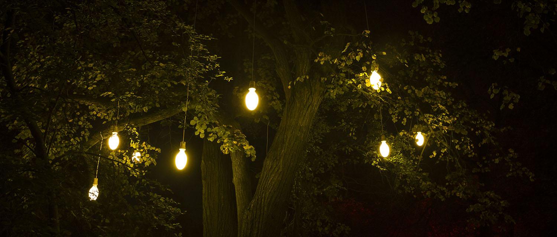 """""""Owoce oświecenia"""", instalacja interaktywna, Festiwal Fabryka Światła, wystawa Wyspa Światła, Przasnysz 2014."""