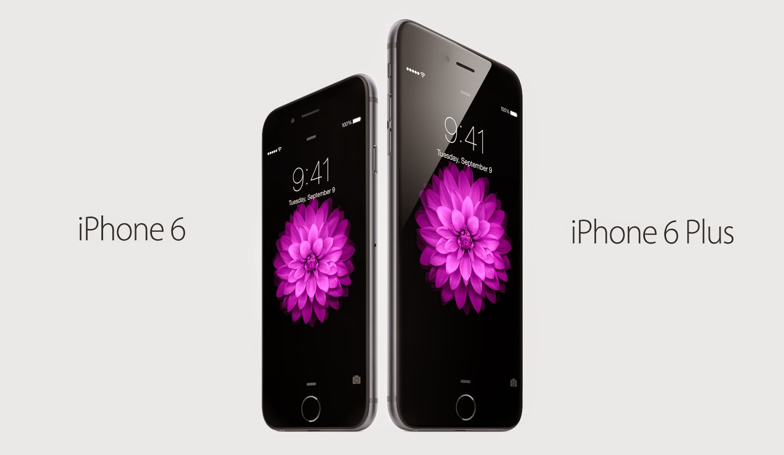 Apple iPhone 6 dan iPhone 6 Plus