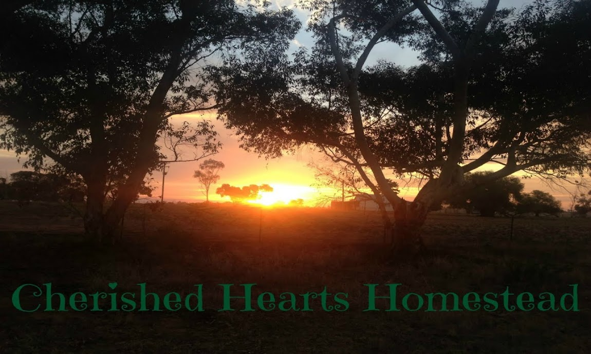 Cherished Hearts Homestead ♥