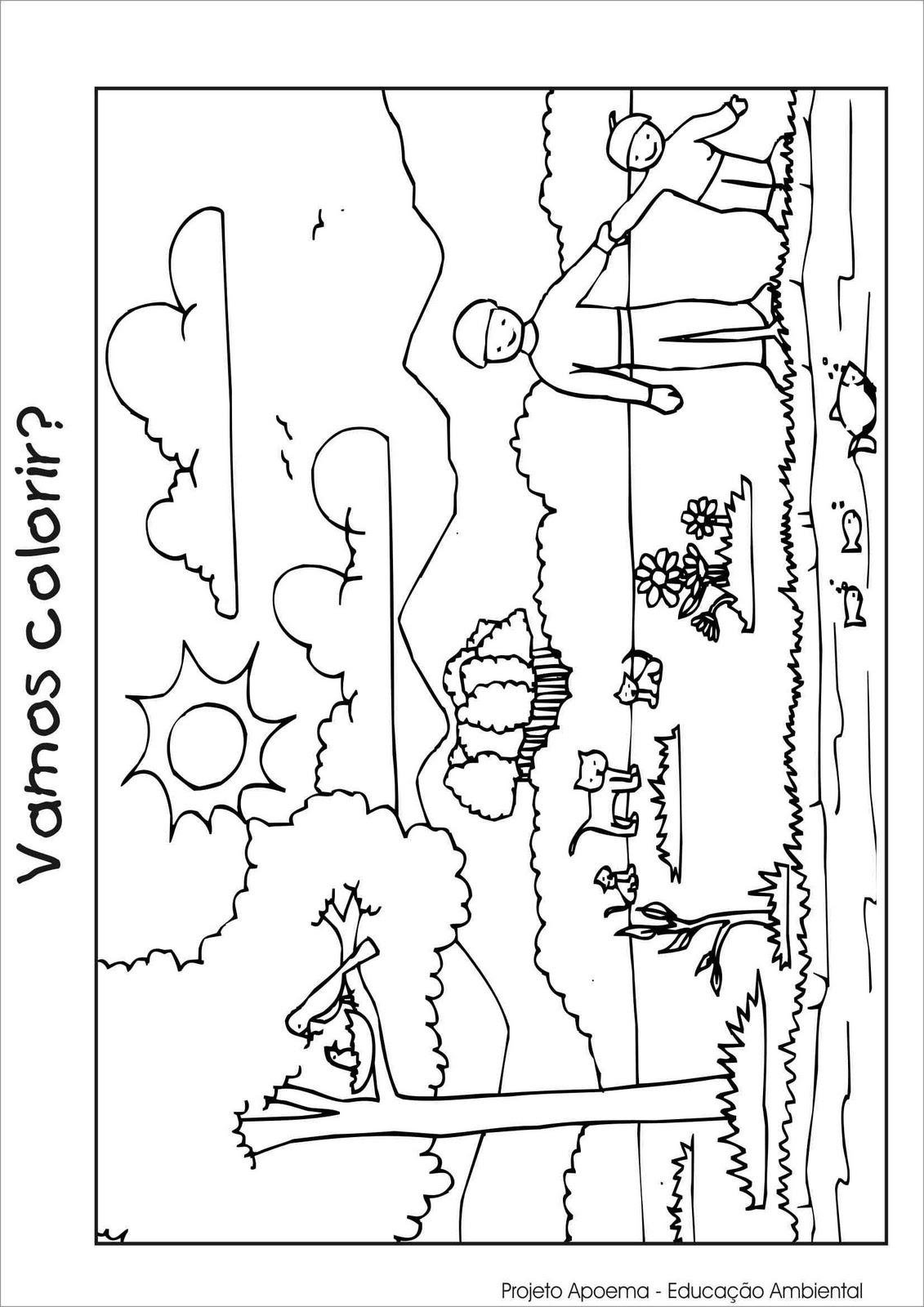 desenho meio ambiente colorir e pintar desenhos para colorir