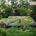 Living Roofs by Jennifer Guggenheim in Portland OR