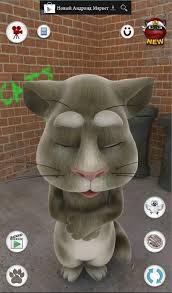 Кошки обои для андроид скачать бесплатно без регистрации