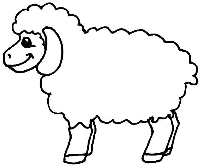 ovelhas desenhos para colorir desenhos para colorir