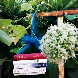 Kitap OkuYorum, kitap, book, mayıs ayı, okumalarım, mayıs, gece ile şafak, fatma erdek, kurucunun kızı, amy engel, benim onaltıncı yüzyılım, lanetli, k.a tucker, çit, okumak, ağaç, yaprak, asma, çiçek,