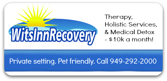 Wits Inn recovery services logo and phone number