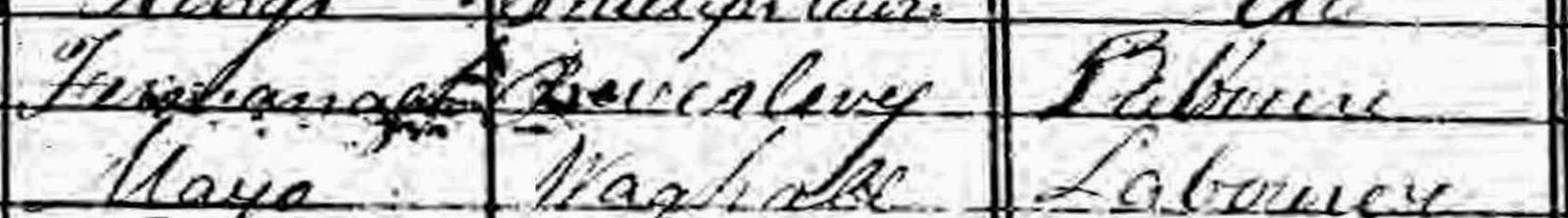 Crowdsourcing for Genealogy - What Does the Record Say?