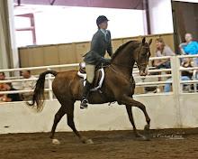 MidSummerfest Horse Show 2011