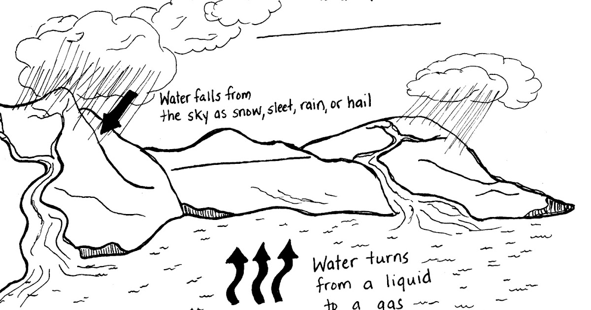 fourth grade reading notes  understanding water resources