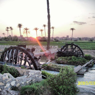 water wheels in fayoum