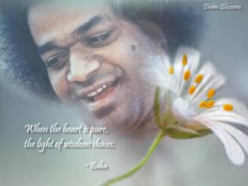 Light of Wisdom
