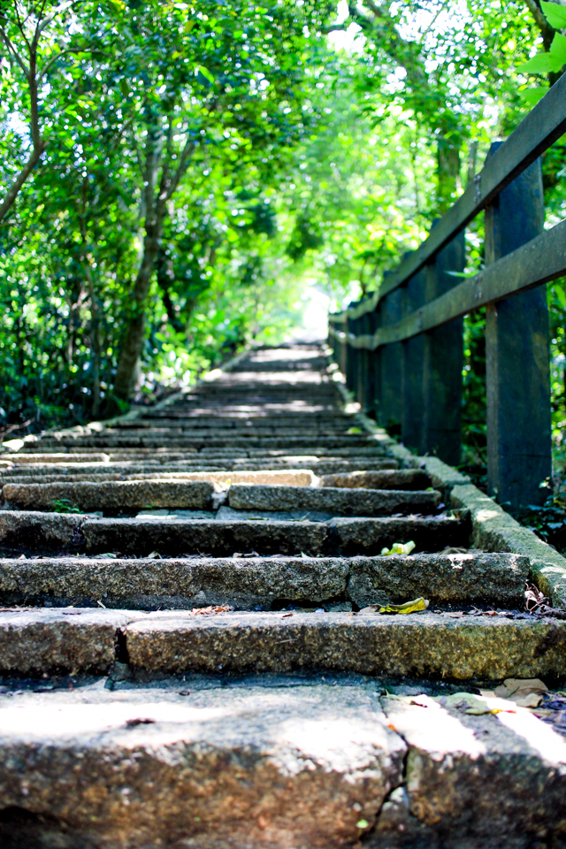 Elephant Mountain, Taipei | hiking trails in Taiwan often are paved with stairways